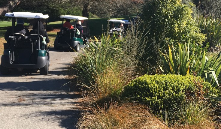 Golf cart tour at the sanctuary
