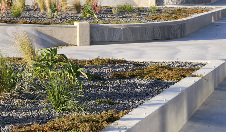 The planting character reflects the rugged and exposed coastal environment to the East, transitioning to the shelter of the estuarine environment to the West.