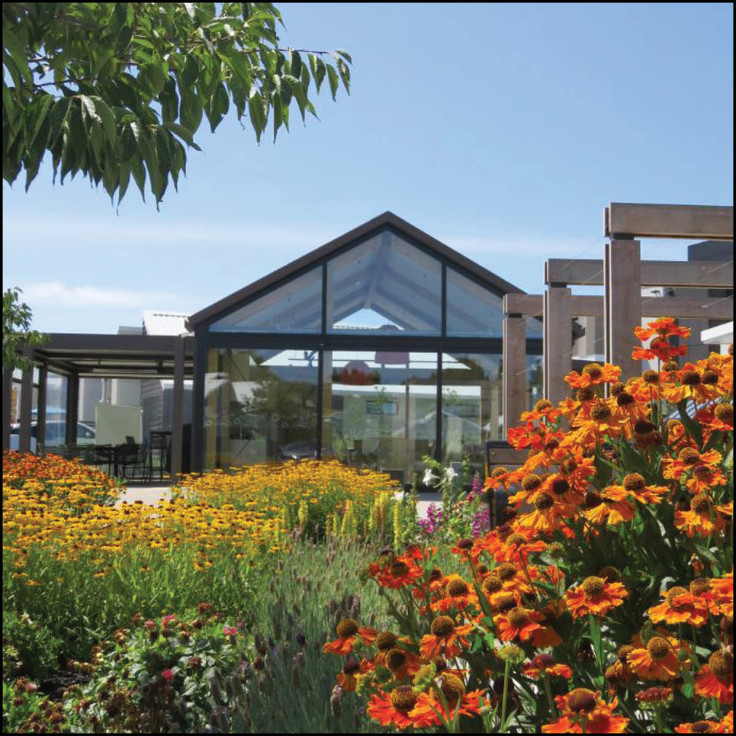 A Petanque court, loop walk, butterfly walk, cut flower gardens and a food production garden all centre around a central communal pavilion building.