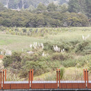 Side view of corten balustrade slats disappearing into the landscape behind it_