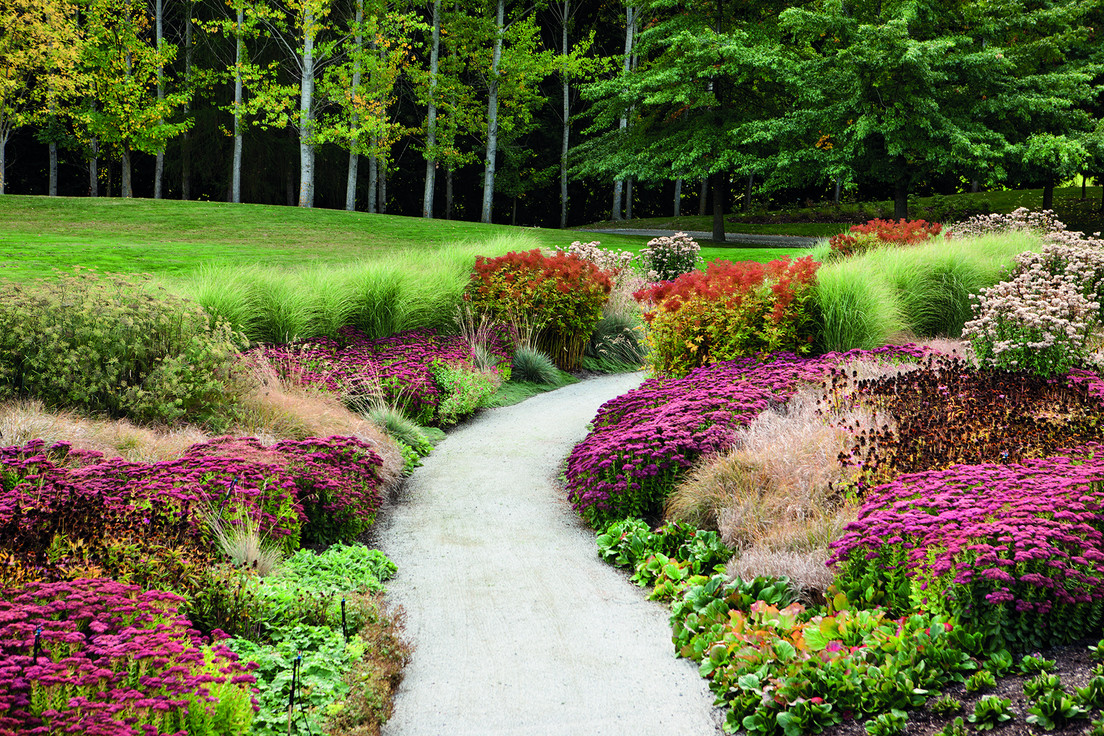 The perennial walk and its summer display of colours.